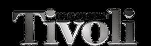 FDF og Spejderne i Tivoli